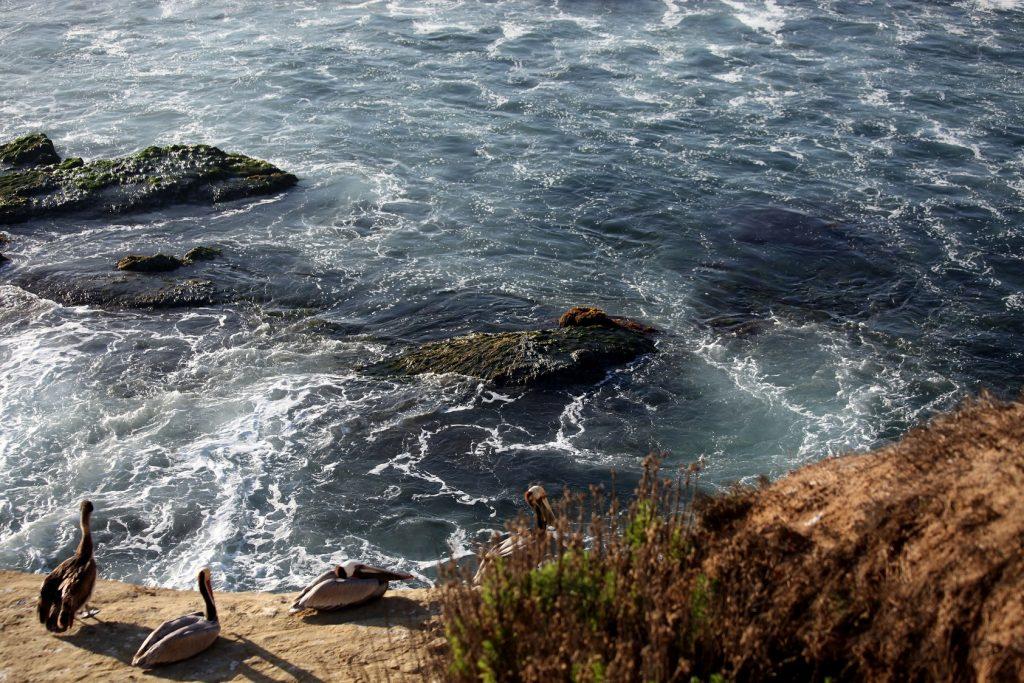 Meeresbrandung live und ganz nah. Wer mag, kann ganz in der Nähe im Motorhomes übernachten. (#03)