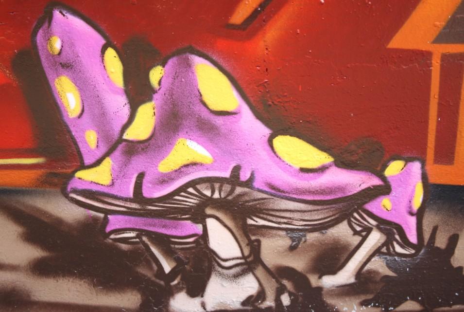 Die Geschichte des Graffitis ist untrennbar mit der Hausreinigung verbunden. Das Entfernen der Graffiti-Kunst von der Hauswand kann zum Widerspruch gegen die Nebenkostenabrechnung führen, wie hier ersichtlich. (#1)