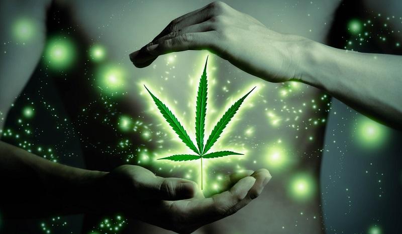 Empirisch etabliert hat sich die Anwendung der Cannabis Therapie bei chronischen Schmerzen (#02)