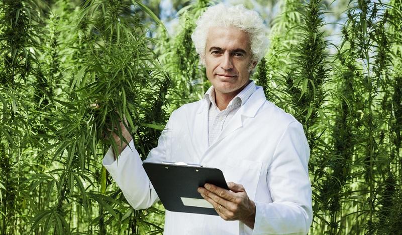 Immer wieder ist in der Presse von erstaunlichen Heilungserfolgen der Cannabis Therapie zu lesen (#01)
