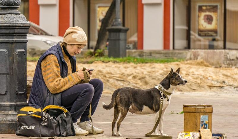 Spenden sammeln: Manchmal wird die Sammlung auch direkt an die betroffene Schule, an das unterstützte Tierheim oder die jeweilige Stelle gegeben. (#03)