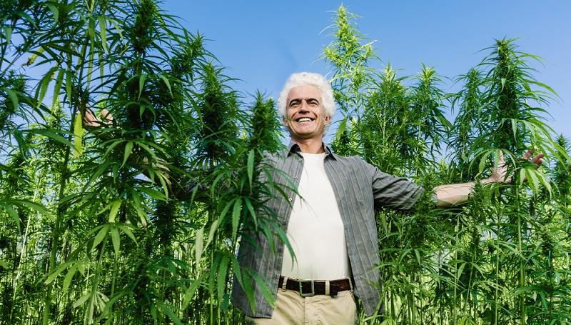 Selbst wenn man also ein Rezept hat oder falls Cannabis künftig vollständig in Deutschland legalisiert werden sollte, bedeutet das nicht automatisch, dass auch jeder dazu befugt sein wird, sein eigenes Gras im Garten anzubauen.