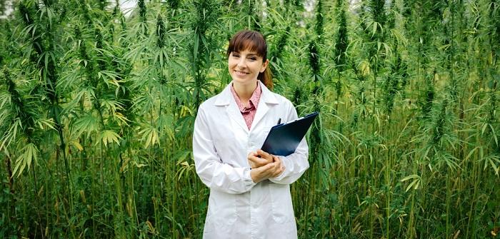 Cannabis-Legalisierung in Deutschland: Kiffen bald erlaubt?