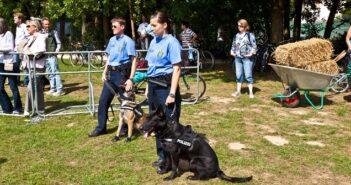 Die Polizei Hessen: Ein interessanter und spannender Arbeitgeber