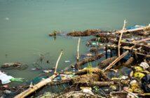 Wasserverschmutzung: Folgen, Urteile und was bereits dagegen getan wird ( Foto: Shutterstock- s0urav_diaz )