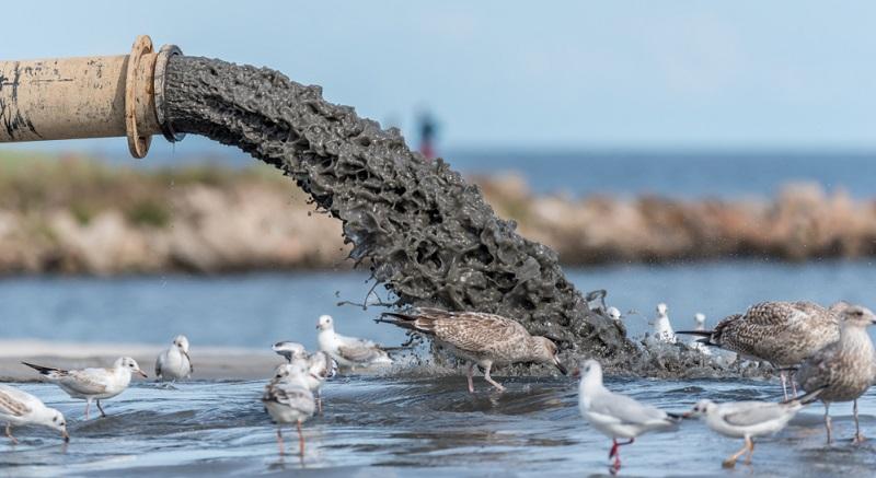 Wasserverschmutzung hat Folgen die jetzt noch nicht in ihrem Ausmaß absehbar sind. (Foto: Shutterstock-JonShore)